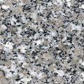SL White Granit Vietnam Granitleri